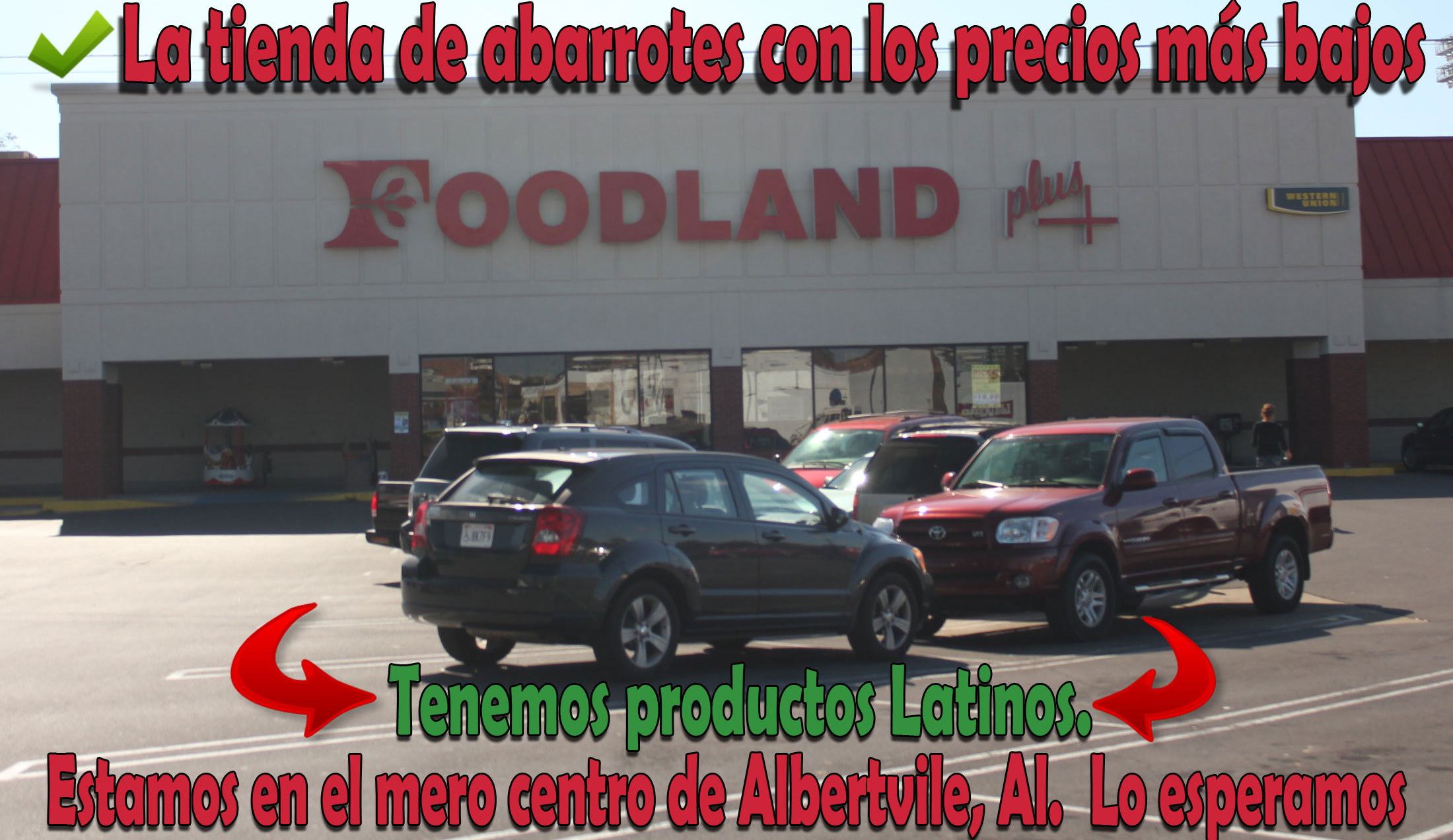 foodland-try